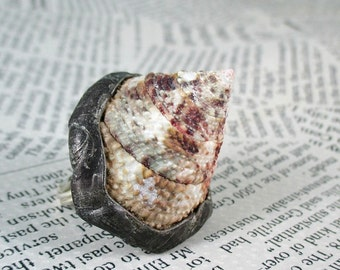 ring with natural shell, adjustable ring, metalwork, handmade