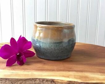 Wheel Thrown Ceramic Succulent Flower Pot