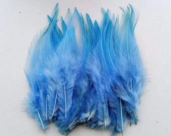 set of 10 feathers Blue 10-15cm