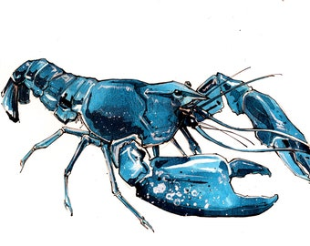 Watercolored Blue Lobster #2