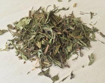 Stevia, Stevia rebaudiana ~ Sacred Herbs from Schmerbals Herbals