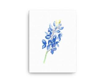Watercolor Bluebonnet Canvas
