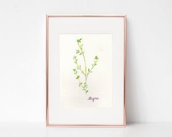 Thyme Print - Watercolor Herbs - Watercolor Thyme Print - Herb Print - Watercolor Kitchen Decor - Watercolor Kitchen Print