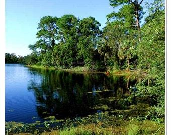 New Orleans Park Photograph