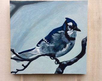 Blue Jay, Jay, Bird Art, Bird Painting