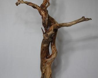 1 Driftwood sculpture. Driftwood.  ONID design.