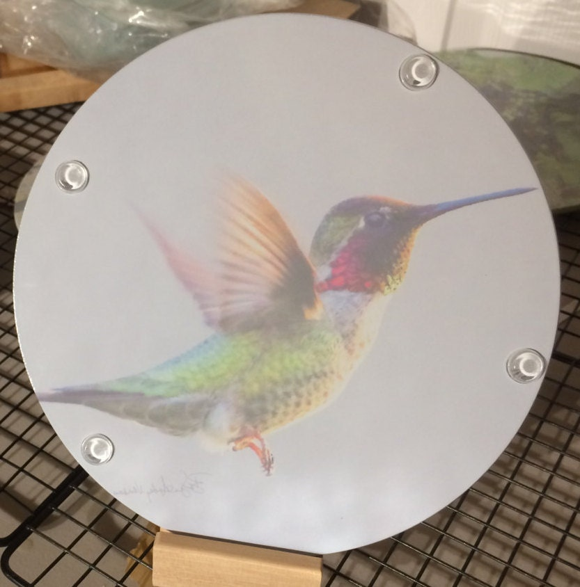 Anna S Hummingbird Flying Round Glass Cutting Board 8 Inch
