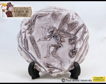 Fairy fossil thorny grey fairy fossil cabinet of curiosities