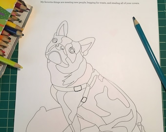 Custom Pet Coloring Page