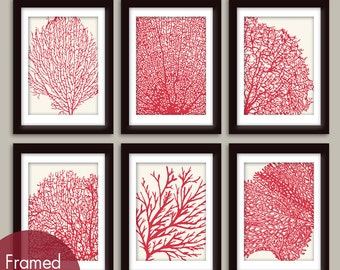 Underwater Sea Coral Collection (Series D) Set of 6 - Art Prints - Featured in Soft Cream and Ruby Red