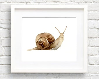 Watercolor Snail Art Print - Wall Decor - Painting