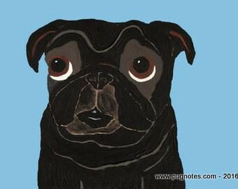 Pug Print - A95 - Black Pug  ~ Who Me?
