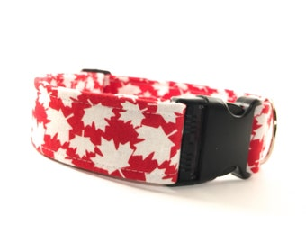 Maple Leaf Red & White Dog Collar - Buckle or Martingale