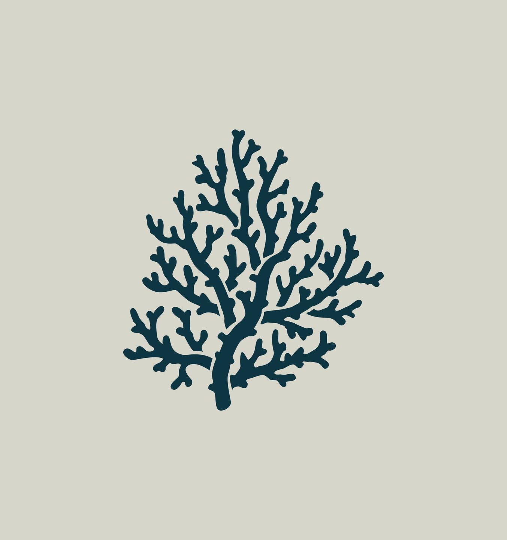 Koralle. Schablone von Korallen. Zeichnung von Korallen. Ref