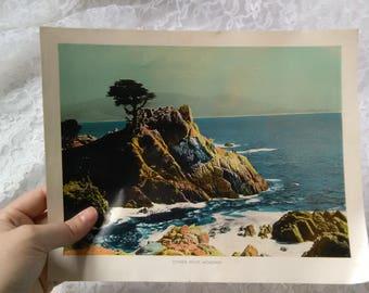 Vintage 40s Print Cypress Point Monterey