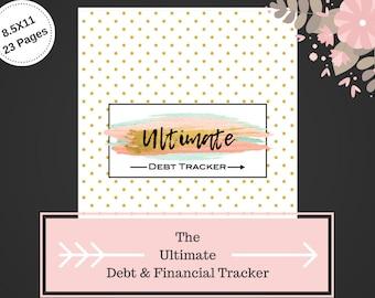 Beautiful Debt Tracker