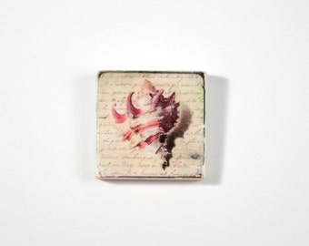 Conch Shell Art Block, Art Blocks, Boho Art, Wood Printing, Wood Block Art, Small Art, Nautical Print, Sea Shell Art, Beach House