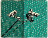 Security Cameras Print...