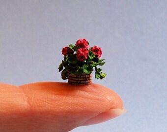 1/4 inch scale miniature-Geranium