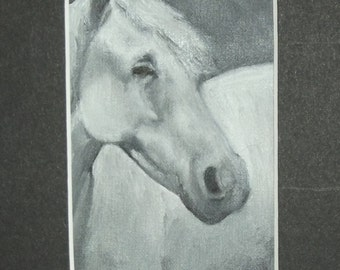 Original ACEO Oil Painting Snowball Horse Portrait in Black and White Framed