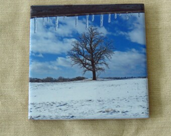 "6"" Ceramic Tile Trivet Icy Fence and Snowy Oak"