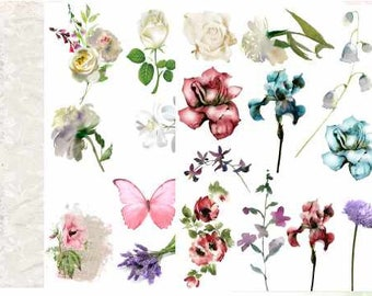Shabby Chic Backgrounds Card Artists
