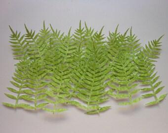Die Cut Fern Leaves -2c