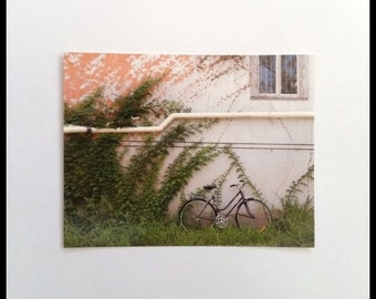Vintage Bicycle and Vines Photograph Postcard