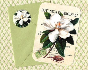Note Cards, Set of 4, Botanicals, Magnolia, Note Cards, Magnolia Cards, Stickers