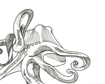 "Octopus Drawing - Bathyscapthopus  - Fine Art Giclee Print of 6""x4"" Black and White Drawing"
