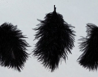 Black Ostrich Feathers - Small