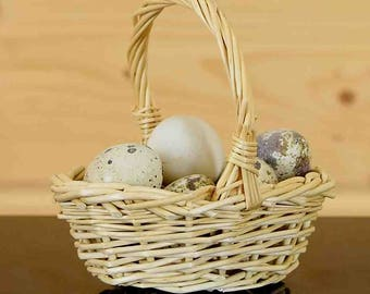 """7 Real Quail Eggs in 3"""" Wide Woven Basket"""
