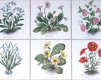 """Flower Ceramic Tile set of 6 / 4.25"""" Poppies Morning Glories Kiln Fired Decor Devonshire"""
