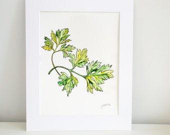 Parsley Watercolor Print