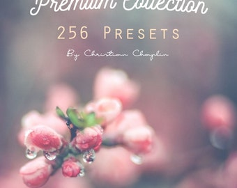 Premium Collection 256 Lightroom Presets (Fashion, Matte, Vintage, Wedding and lot of other)