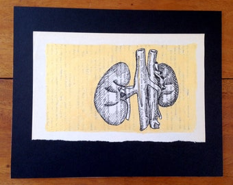 filter (black ink drawing of kidneys with gold gouache background)