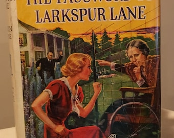 Nancy Drew - The Password to Larkspur Lane by Carolyn Keene - Blue Silhouette Endpapers