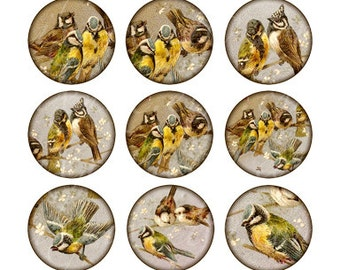 birds 1 inch round images Printable Download Digital Collage Sheet 1 inch circle diy jewelry pendant