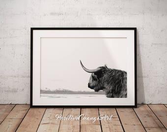 Highland Cow, Highland Cow Print, Highland Cow Art, Scottish Cow Wall Art, Scottish Cow Print, Printable Highland Cow, Highland Cow Poster