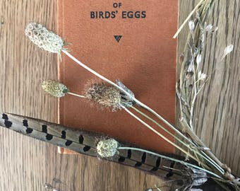 The Observer's Book of Bird's Eggs