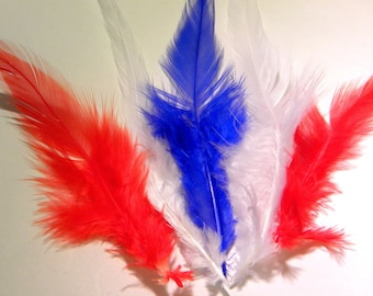 10 natural feather - 10 to 16 cm-red - 58 PLU