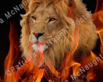 Lion Fire 8x10 Digital Art Download
