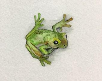 Green tree frog A5 print