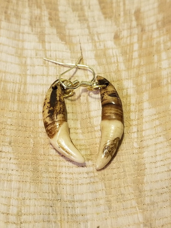 Handmade Real Tibetan Wolf Tooth Gold Earrings Native American Tribal Outdoors Primal Fang Fashion Art Collection (E211)