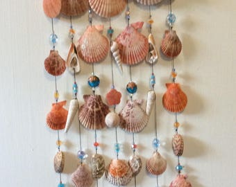 Exotic seashell wind chimes