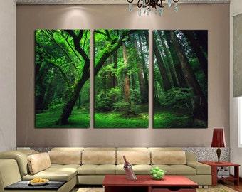 Deep Forest 3 Piece Framed Wall Canvas