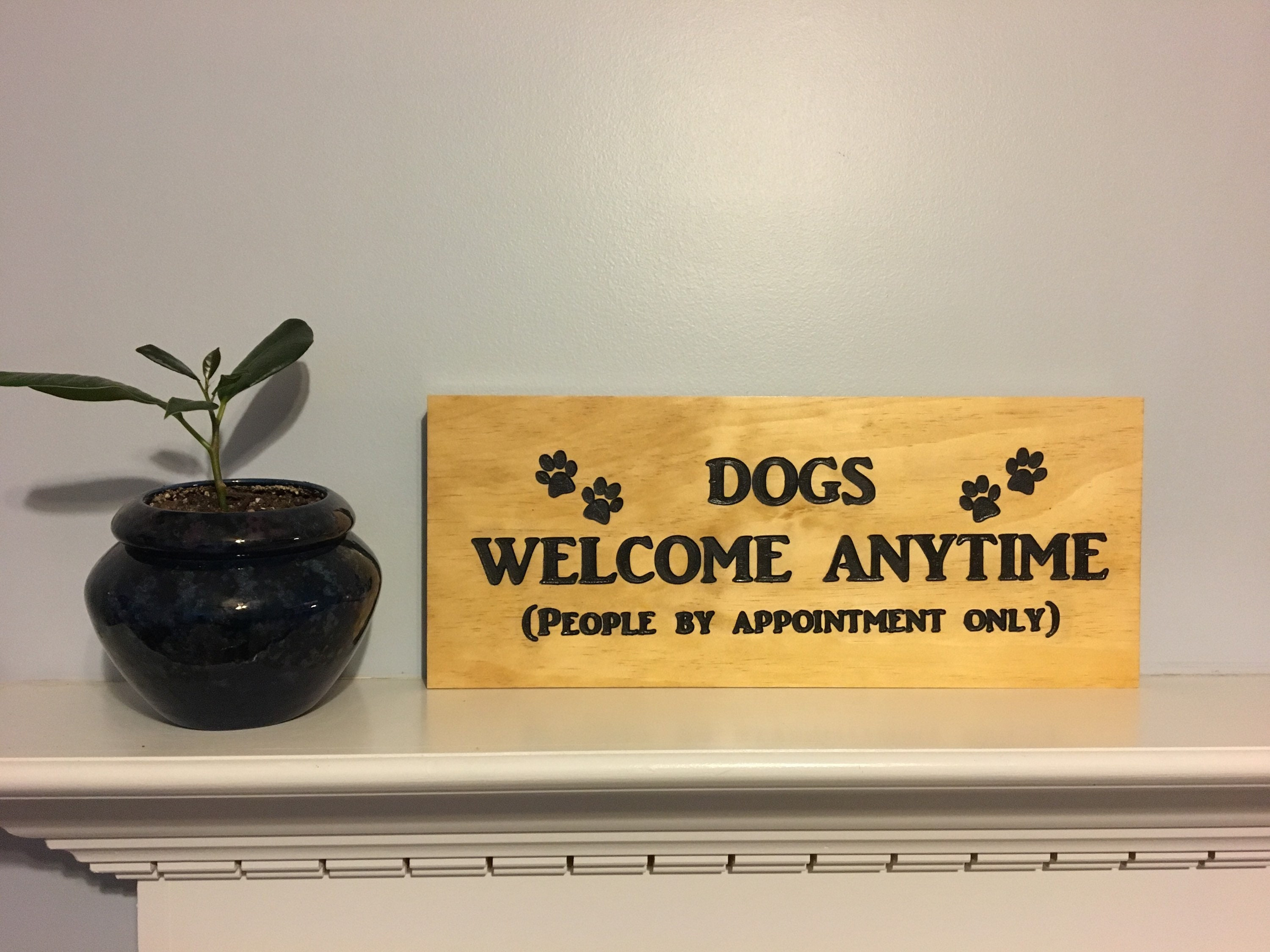 Dogs welcome any time people by appointment only carved