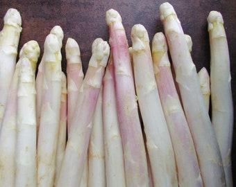 Organic Eros Asparagus Seeds -  Grow in Heavier Soils, Medium Yield of Large Spears