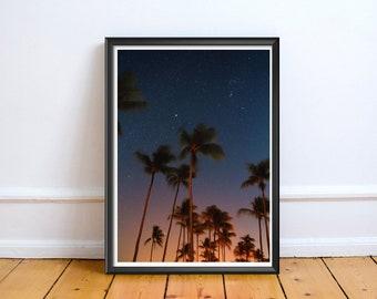Palm Trees Dusk Sky,Art,Photo,Digital,Download,Decor,Home,Office,Tree,Nature,Dusk,Sunset,Coast,Coastal