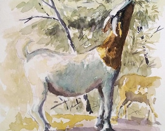 Goats in the Arroyo - original watercolor painting